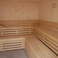 Sauna, salud y placer